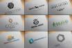 create a custom, professional Logo Design