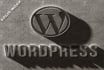 wordpress Php website Creation Add Functions