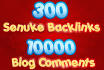 a SENUKE pyramid 300 High Pr Backlinks and 10000 Blog comments Buy now
