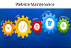 maintenance your Website, Blog, Portal and Software