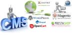 install Joomla, Wordpress, Magento on your server