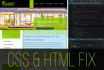 fix your CSS and Html Website Issues