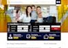costumized wordpress responsive website theme and plugin