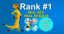 explode your Results with Exclusive SEO, High Pr,Backlinks