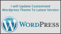 update Customized Wordpress Theme To Latest Version
