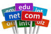 help you buy a domain and help you get started with a website