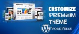 customize your premium wordpress theme