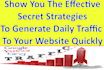 guide you how to generate traffic to your website quickly