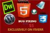 fix WORDPRESS errors,issues and theme customization