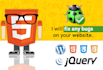 fix your html, css, jquery, wordpress bugs