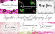 design AWESOME signature text or handwritten in 24 hours