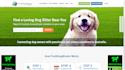 design fully responsive website