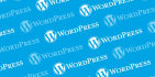develop a wordpress website for your business
