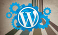 fix your Wordpress blogs css,html and other issues and customize