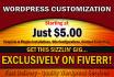 provide Wordpress website customization services