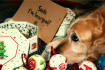 have my dog deliver your christmas message