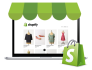 customize fix and update shopify website