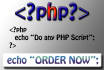 do any PHP script