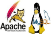 make better your mysql,  tomcat and apache server