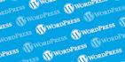 fix wordpress css problem