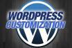fix WordPress error or customize WordPress website