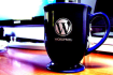 quickly fix your WordPress problems
