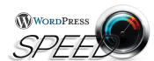 optimize and Speed up your Wordpress website