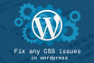 fix any CSS issues on your wordpress website