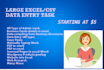 be your Virtual Assistant to do all sorts of data entry