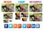 resize, crop, or resample for social media