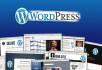 install Wordpress, Theme and plugins