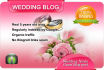 write and guest post on my WEDDING blog