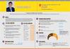 create killer infographic resume or Cv