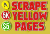 search Yellow Pages to get customer database