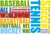 write sports betting articles for your website