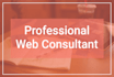 consult your any web based project