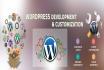 do WordPress customization and fix