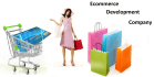 build any type of Ecommerce website
