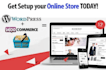 do WordPress and WooCommerce website for your business