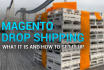 create Magento eCommerce Dropship Website