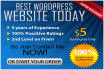 create the best wordpress business website or blog