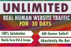 send DAILY 3000 plus web,traffic for 10 days