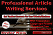 do SEO Article Writing