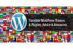 install, customize,translate wordpress theme and plugins