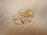 provide a modern Logo in 24hrs