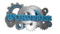 make a stander wordpress website for you