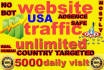 drive genuine super targeted 300000 USA traffic visitors