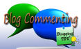 do 30 blog comments on your blog, high quality