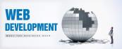 develop your website in 2 days