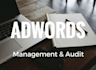audit and manage your Adwords campaign